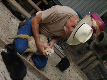 Allegations   Caboodle Ranch Animal Cruelty Investigations